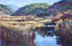 Value Study of Creek